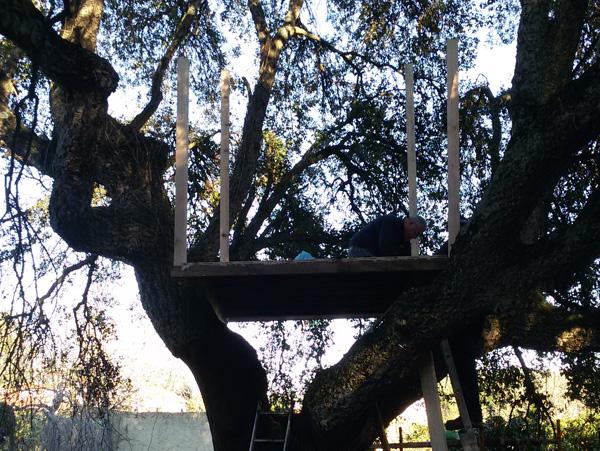 Construção de Casa na Árvore